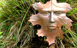La espera del otoño Imágenes de archivo libres de regalías