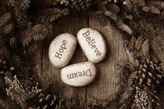 La esperanza, sueño, cree en texto Imagen de archivo libre de regalías