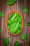 La espinaca jugosa fresca se va en una tabla marrón de madera Productos naturales, verdes, comida sana, vitaminas Foto de archivo libre de regalías