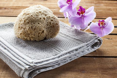 La esponja natural y la orquídea rosada florece en el fondo de madera para el lavado Foto de archivo libre de regalías