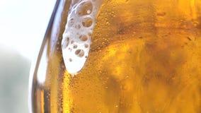 La espuma resbala abajo del vidrio de cerveza Cerveza recientemente elaborada metrajes