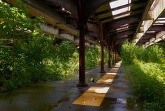 La estación de Hoboken RR sigue Overgrown Imágenes de archivo libres de regalías