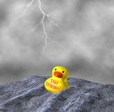 La estancia fuerte sea Duck Afloat Rainstorm Illustration amarillo duro Imágenes de archivo libres de regalías