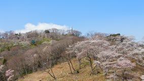 La estatua de Kannon y el castillo de Funaoka arruinan el parque, Miyagi, Japón Foto de archivo