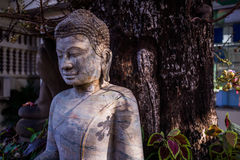 La estatua de piedra de Buda en fondo del bosque Imagen de archivo libre de regalías