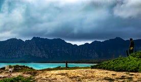 La estatua de un hombre rana pasa por alto el Hawaiian frente al mar imagenes de archivo