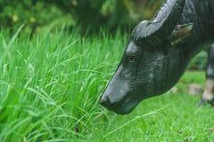 La estatua del búfalo que se colocaba en hierba verde en arroz archivó en el parque público foto de archivo