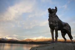 La estatua del collie y la puesta del sol Fotografía de archivo