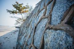 La estructura en la playa Fotos de archivo libres de regalías