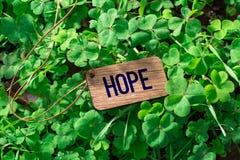 La etiqueta de madera de la esperanza de la palabra imagen de archivo