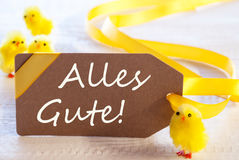 La etiqueta de Pascua, polluelos, Alles Gute significa recuerdos Imágenes de archivo libres de regalías