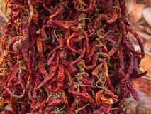 La exhibición de centenares seca la pimienta de chile rojo Fotos de archivo libres de regalías