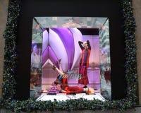 La exhibición de la ventana de los días de fiesta en los sacos Fifth Avenue tituló la tierra del ` del ` de 1000 placeres en Manh Imágenes de archivo libres de regalías