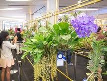 La exhibición floral en el siamparagon, Tailandia Foto de archivo