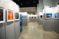 La exposición de la foto, la sala de exposiciones Imagen de archivo libre de regalías