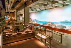 La exposición en Hong Kong Museum de la historia exhibe vida primitiva de la gente asiática salvaje nativa en el ambiente prístin foto de archivo libre de regalías