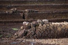 La extracción de la turba, bloques del césped llenó hasta la naturaleza seca, industrial imagen de archivo libre de regalías