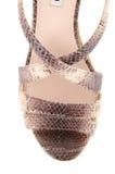La extremidad de los zapatos de la mujer aislados en blanco Fotografía de archivo libre de regalías