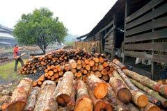 La fábrica del carbón de leña (procesos de la fábrica del carbón de leña) Foto de archivo libre de regalías