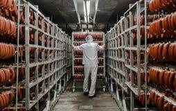 La fábrica para la producción de comida de los ingredientes naturales Carnicero Shop Carne de vaca que mata Foto de archivo libre de regalías