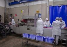La fábrica para la producción de comida de los ingredientes naturales Carnicero Shop Carne de vaca que mata Foto de archivo