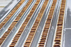 La fabbrica di produzione della cialda e del biscotto allinea, nastro trasportatore fotografia stock libera da diritti