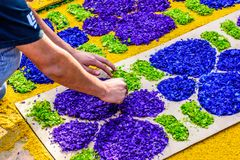 La fabricación del serrín teñido prestó la alfombra, Antigua, Guatemala Imagen de archivo