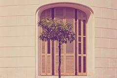 La fachada de una casa española con la sola ventana cerró los obturadores y el árbol de limón de madera fotografía de archivo