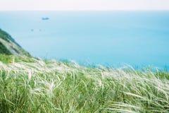 La falaise avec libère et mer bleue Beaux herbe et océan photographie stock libre de droits