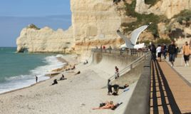 La Falaise d'Amont-Etretat-the gull's land Stock Images