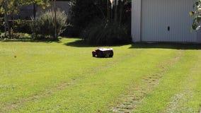 La falciatrice da giardino dell'erba del robot taglia l'erba in un giardino archivi video