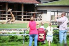 La famiglia alimenta e cattura la giraffa delle maschere in giardino zoologico Fotografie Stock Libere da Diritti