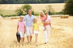 La famiglia che cammina insieme con l'estate ha raccolto la F Fotografie Stock