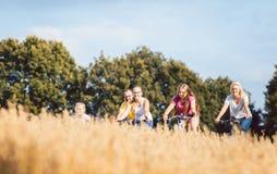 La famiglia che guida le loro bici ha sparato sopra un campo di grano Fotografie Stock