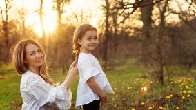 La famiglia felice cammina in primavera il prato fotografie stock