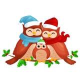 La famiglia felice del papà e del bambino della mamma dei gufi in un cappello ed in una sciarpa caldi che si siedono su un ramo e Immagini Stock Libere da Diritti