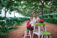 La famiglia mangia l'uva Immagine Stock Libera da Diritti