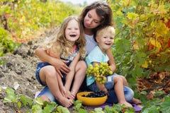 La famiglia sta divertendo nella vigna dell'uva Immagine Stock