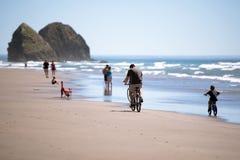La famiglia sulle biciclette e l'altra gente stanno riposando sul pictu fotografia stock libera da diritti