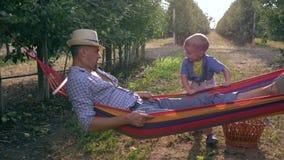 La familia alegre, niño feliz sacude a su padre en hamaca cerca de cesta de fruta en el jardín de la manzana en la cámara lenta metrajes