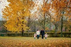 La familia camina en el parque en otoño Imagenes de archivo