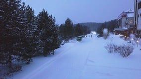 La familia camina en la trayectoria del parque en invierno clip Opini?n superior la familia que camina en nevadas en la trayector almacen de video