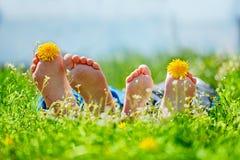 La familia con el diente de león florece la mentira en hierba verde en día soleado imagen de archivo libre de regalías