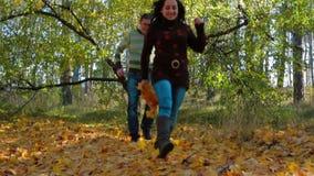 La familia corre con la cámara lenta del bosque del otoño almacen de metraje de vídeo