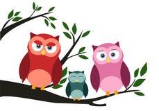 La familia del búho lindo en árbol libre illustration