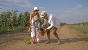 La familia en campo, madre del pueblo con el padre trae el perrito en cesta de la paja como regalo al pequeño hijo almacen de metraje de vídeo