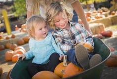La familia joven disfruta de un día en el remiendo de la calabaza Foto de archivo libre de regalías
