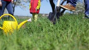 La familia joven planta un árbol en un día de primavera soleado almacen de video