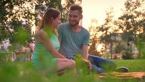La familia joven se está sentando en la manta en parque en el verano, beso de los padres, relaja concepto almacen de metraje de vídeo