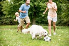 La familia juega a fútbol con el perro Imagenes de archivo